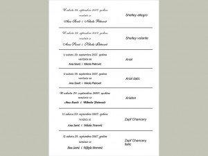 Fontovi i izbor tekstova za pozivnice 4
